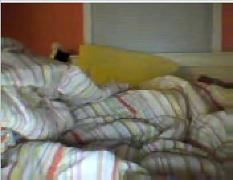 Gordinha com peitinhos lindos na cam