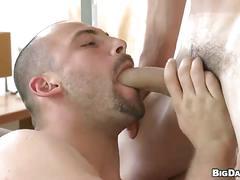 Horny cum gulping daddies ultimate cock eating adventure
