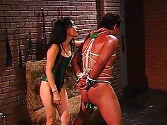 Desires of a dominatrix 4