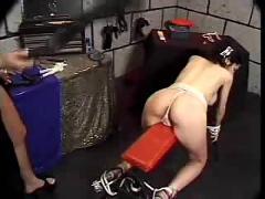 bdsm, sex toys, tits