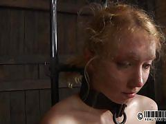 small tits, milf, blonde, bondage, bdsm, humiliation, collar, suffocation, vault, restraints, real time bondage, nicki blue
