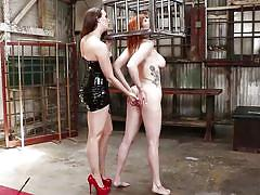 milf, tattoo, bdsm, big ass, lesbians, big tits, babe, redhead, fingering, anal dildo, lezdom, bondage cage, everything butt, kink, lauren phillips, chanel preston