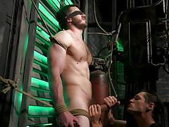 bdsm, cock torture, handjob, rope bondage, big cock, blindfolded, threesome, blowjob, balls licking, men on edge, kink men, vander pulaski