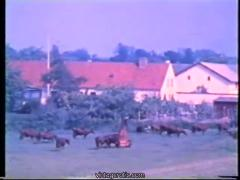 Farmer porn - vintage copenhagen sex 3 - part 1 of 5