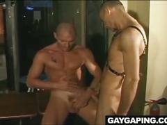 anal, bdsm & fetish, blowjobs, hardcore,