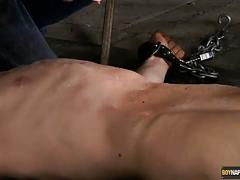 Moans of agony for calvin croft! - boynapped