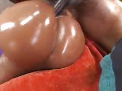 big butts, black and ebony, doggy style, hardcore, pornstars