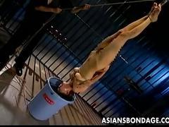 asian, bdsm,