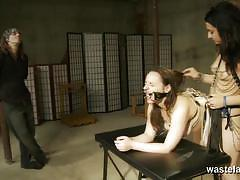 Wasteland exclusive bdsm videos racy brunette...