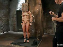 orgasm, bdsm, spanking, torture, vibrator, executor, clothespins, wooden box, the training of o, kink, mickey mod, adriana chechik