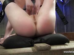 big ass, babe, bdsm, brunette, fetish, lesbian, pussy, alt porn, femdom,