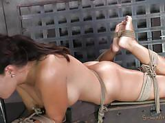 milf, bdsm, fucking machine, brunette, tied up, mouth fuck, ropes, sexually broken, ava dalush, matt williams