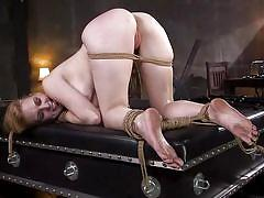 tattoo, blonde, bdsm, babe, whipping, domination, from behind, rope bondage, kink, delirious hunter, stirling cooper