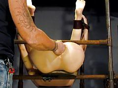 Anal torture for abigail dupree