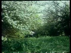 Prisons tres speciales pour femme 1982 christine black-c boirie scn-9