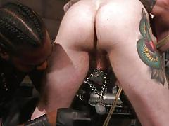 tattooed, blindfolded, rope bondage, bdsm, cock torture, interracial, bbc, weights, domination, cock sucking, tied up, bound gods, kink men, seamus o'reilly, ace rockwood