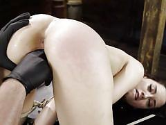 bdsm, babe, domination, dildo, vibrator, fingering, brunette, from behind, device bondage, hogtied, kink, aria lee