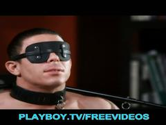 Naughty dominatrix stoya punishes her boy toy