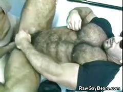 bears, hunks, big cocks, dads & mature, amateurs, uniform, anal, hardcore,