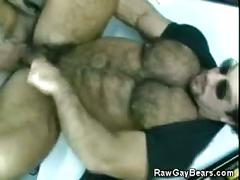 Beefy mature gay police bear fucking on the table