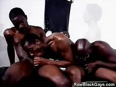 Arousing orgy of monster black cocks