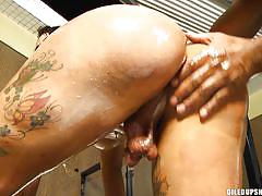 shemale big boobs, big ass ladyboy, anal sex, tattoo, cumshot, latina, cock riding, fuck from behind, oiled, tranny pack, sabrina thalia