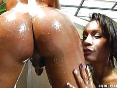Oiled tranny sluts jerk off together