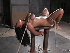 bdsm, big tits, domination, tits torture, ball gag, rope bondage, dildo on a stick, black haired babe, hard tied, hard tied, jack hammerx, maxine x