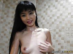 anal, petite, hairy, interracial, asian, blowjob, hardcore, brunette, natural tits, big black cock, dogfart network, marica hase
