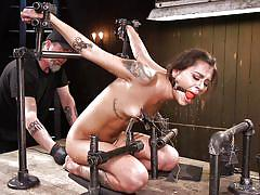babe, torture, domination, tattooed, tied up, ball gag, nipple clamps, device bondage, metal bondage, device bondage, kink, kacie castle, the pope