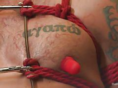 Blowjob video for gay bdsm lovers