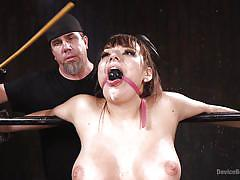 brunette babe, ball gag, device bondage, dildo sucking, metal bondage, dildo on a stick, device bondage, kink, charlotte cross, the pope