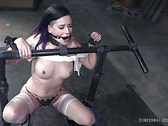 big tits, babe, high heels, whipping, tied up, gagged, purple hair, device bondage, infernal restraints, freya french