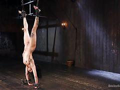 bdsm, tattooed, upside down, ebony babe, ball gag, nose piercing, device bondage, electric vibrator, device bondage, kink, the pope, jessica creepshow