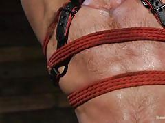 twink, tattooed, rope bondage, masked, bdsm, blowjob, handjob, leather, bearded guy, domination, men on edge, kink men, jack andy