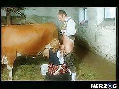 Milking the cow and then the farmer!