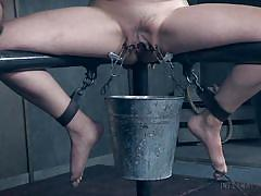 Mia torro learns what is discipline