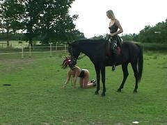 Inflagranti ponygirl