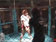 Wrestling 0009; japanese girl cage match